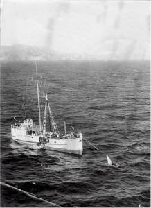 Radio Hauraki's ship Tiri II in 1969