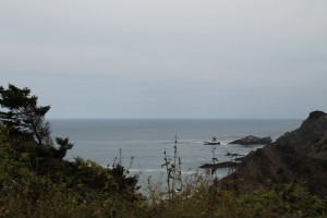 Mendocino Coast (Photo: J. Waits)