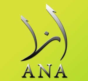 ANA New media association Syria