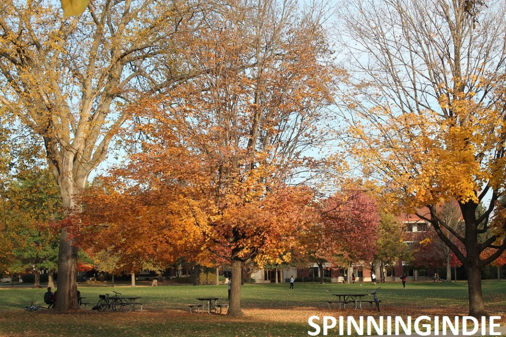 Carleton College campus. Photo: J. Waits