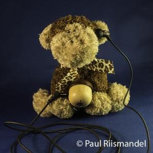 stuffed monkey with acorn radio