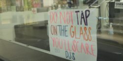 Do Not Tap on Glass sign at college radio station KCSU. Photo: J. Waits