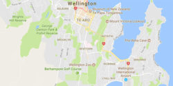 Wellington NZ map